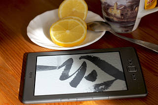 Kindle - eBook - Picture